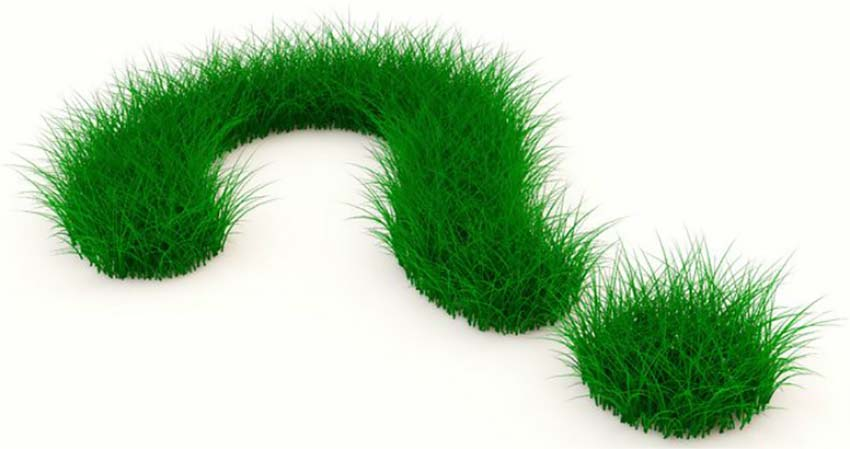 FAQ landscaping